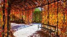 Schonbrunn-Palace-Autumn