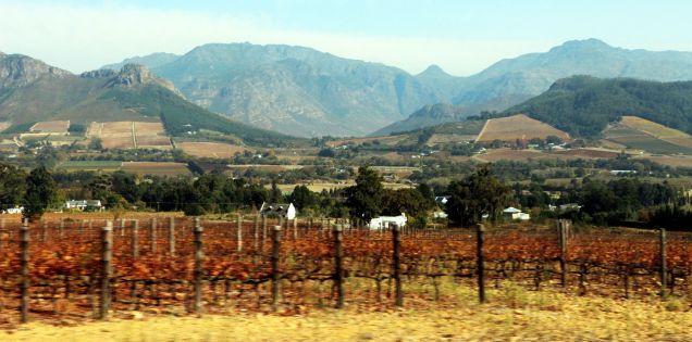 vinicolas-africa-do-sul-franschhoek-03