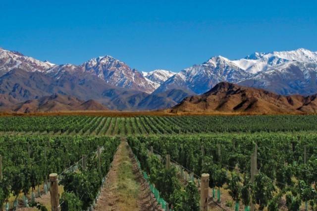 vinicolas-em-mendoza-e1479151405746