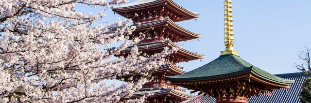 tokyo-destination