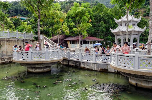 os-visitantes-não-identificados-estão-alimentando-tartarugas-na-lagoa-da-libertação-tartaruga-do-templo-de-kek-lok-si-penang-98192634