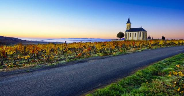 church_vineyards_and_road_of_saint_laurent_doingt_during_sunrise_beaujolais_france_c_gaelfphoto